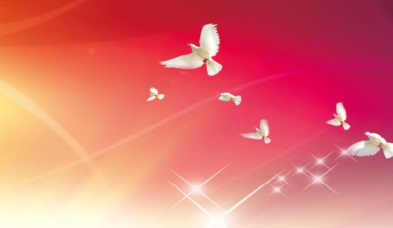 2016年7月刊精选 中国梦 国珍梦 我的梦主题演讲比赛征文  原版阅读